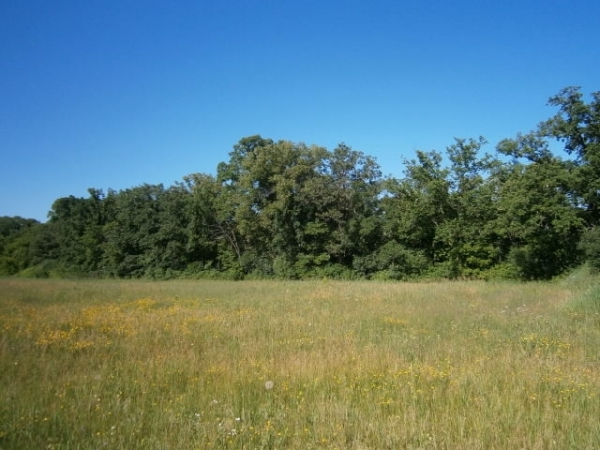 Listing Image #5 - Land for sale at 300 West First Street, Star Prairie WI 54026