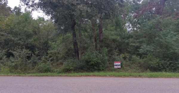 Listing Image #1 - Land for sale at 0 Charles Barker Ave (Legion Ave), Cleveland TX 77327