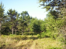 Others property for sale in Grayling, MI