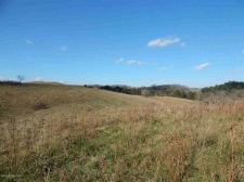 Listing Image #2 - Farm for sale at TBD Reed Creek Rd, Fort Chiswell VA 24360