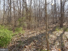 Listing Image #2 - Land for sale at Lot 4 Off Spicy Cedar Lane, Berkeley Springs WV 25411