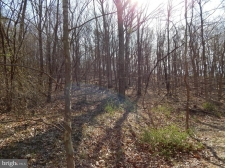 Listing Image #3 - Land for sale at Lot 4 Off Spicy Cedar Lane, Berkeley Springs WV 25411