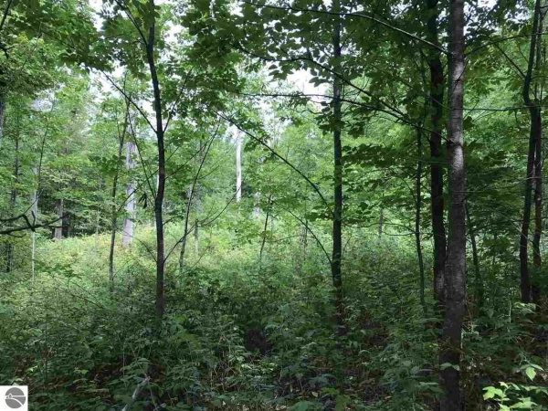 Listing Image #1 - Land for sale at 0 W 26 Road , 0 Rickadee Ln, Mesick MI 49601-0000