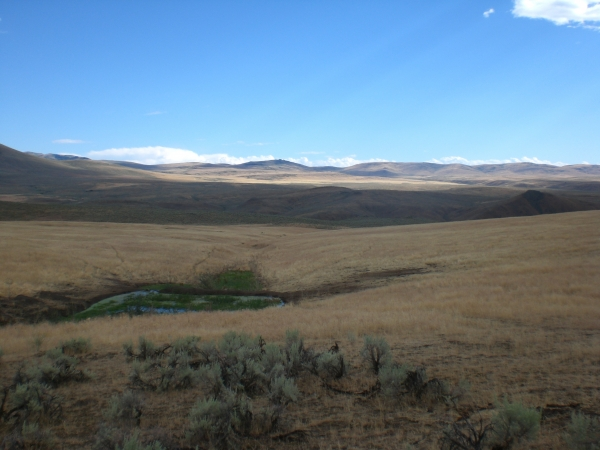 Listing Image #1 - Land for sale at Sparta Acreage, Baker City OR 97814