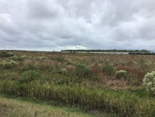 Listing Image #2 - Land for sale at Hwy 397, Lake Charles LA 70615