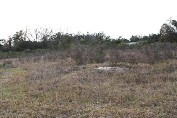 Listing Image #2 - Land for sale at 1304 US Hwy 82 E, Tifton GA 31794