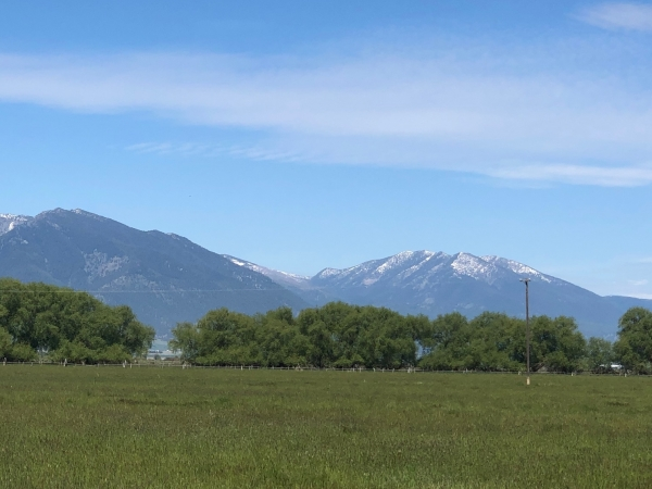 Listing Image #2 - Ranch for sale at Old Trail Road, Baker City OR 97814