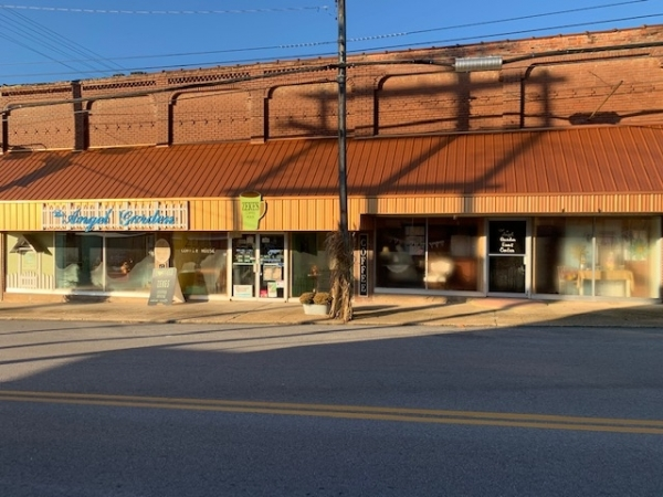 Listing Image #1 - Retail for sale at 116 S Elm Street, Mountain View MO 65548