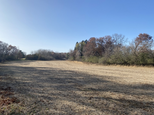 Listing Image #3 - Land for sale at TBD County Rd V, Houlton WI 54082