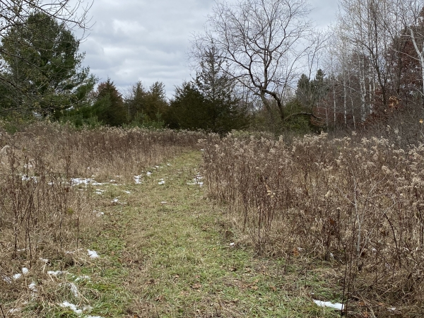 Listing Image #7 - Land for sale at TBD County Rd V, Houlton WI 54082