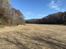 Listing Image #5 - Land for sale at TBD County Rd V, Houlton WI 54082