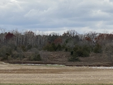 Listing Image #8 - Land for sale at TBD County Rd V, Houlton WI 54082