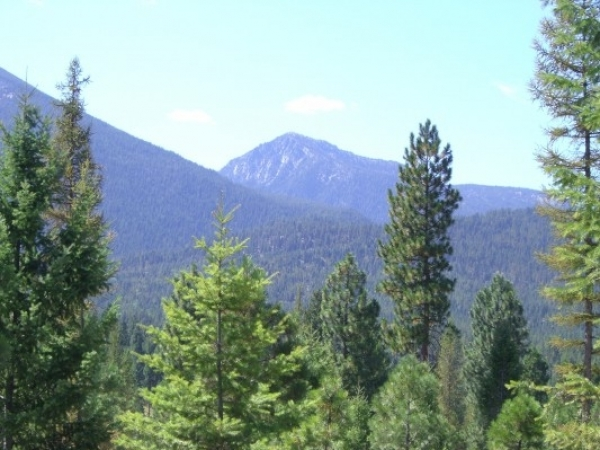 Listing Image #1 - Land for sale at Foothill Road, Haines OR 97833