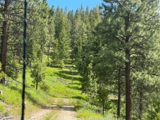 Listing Image #3 - Land for sale at Foothill Road, Haines OR 97833
