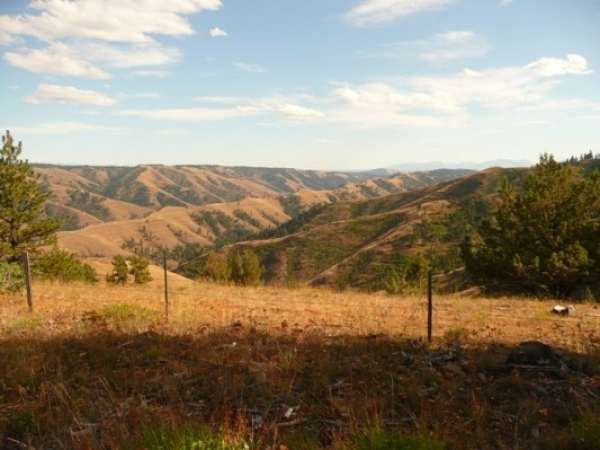 Listing Image #3 - Ranch for sale at Chief Joseph Canyon Ranch, Baker City OR 97814