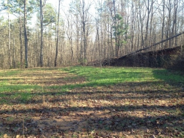 Listing Image #1 - Land for sale at 845 Smithonia Road, Winterville GA 30683