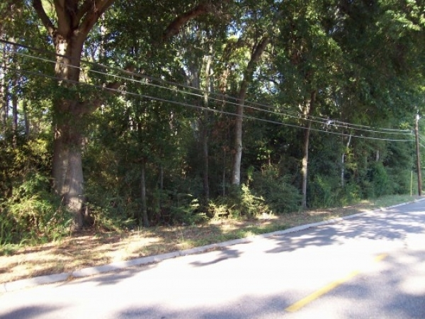 Listing Image #1 - Land for sale at Third Avenue at Cottonwood Road, DOTHAN AL 36301