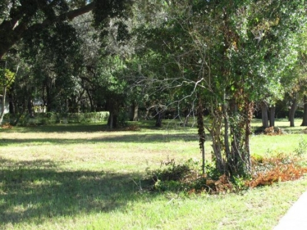 Listing Image #1 - Land for sale at 7407 Ehrlich Rd, Tampa FL 33625