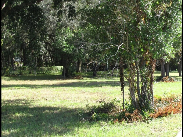 Listing Image #3 - Land for sale at 7407 Ehrlich Rd, Tampa FL 33625