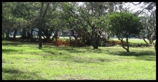 Listing Image #2 - Land for sale at 7407 Ehrlich Rd, Tampa FL 33625