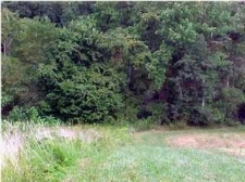 Land for sale in Chelsea, AL