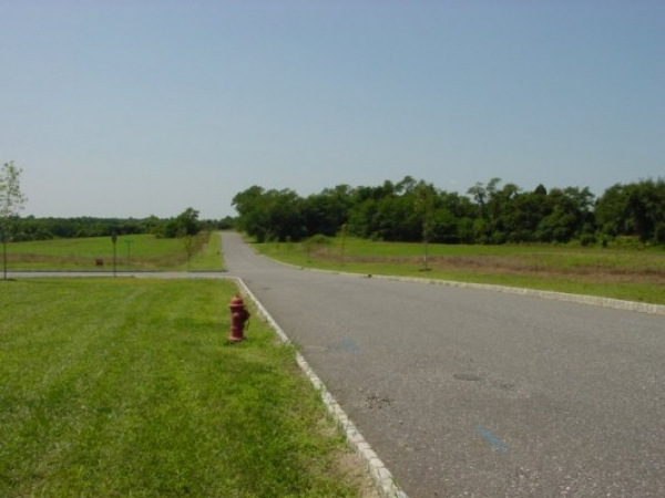 Listing Image #3 - Land for sale at 7 Burton Lane, Mullica Hill NJ 08062