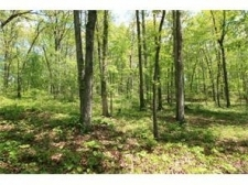 Listing Image #1 - Land for sale at 581 Grizzle Road, Dawsonville GA 30534