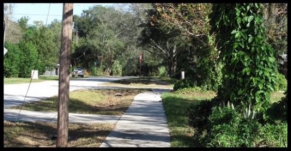 Listing Image #4 - Land for sale at 7411 Ehrlich Rd, Tampa FL 33625