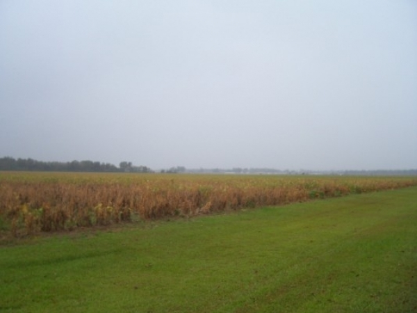 Listing Image #1 - Land for sale at Highway 98 and Highway 95, Elberta AL 36530