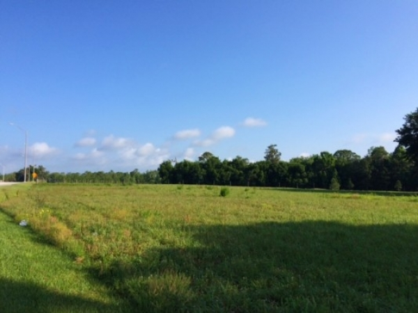 Listing Image #1 - Land for sale at 4300 Kathleen Road, Lakeland FL 33805