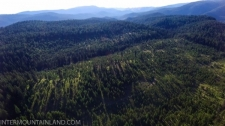 Forest property for sale in Union, OR