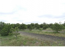 Land for sale in Haines City, FL