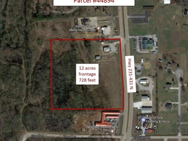 Listing Image #1 - Land for sale at 15219 Highway 231-431, Hazel Green AL 35750