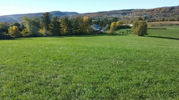Listing Image #1 - Land for sale at Route 7, Cobleskill NY 12043