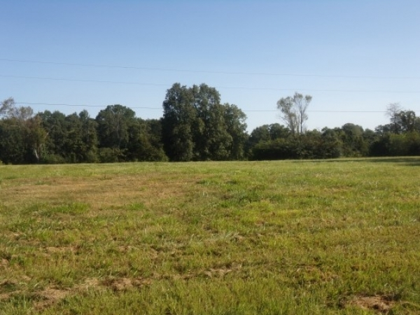 Listing Image #1 - Land for sale at 0 Jefferson Street, Athens AL 35611