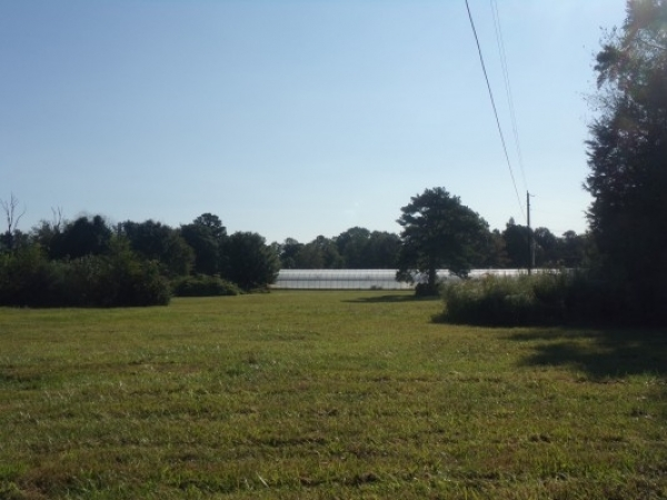 Listing Image #2 - Land for sale at 0 Jefferson Street, Athens AL 35611
