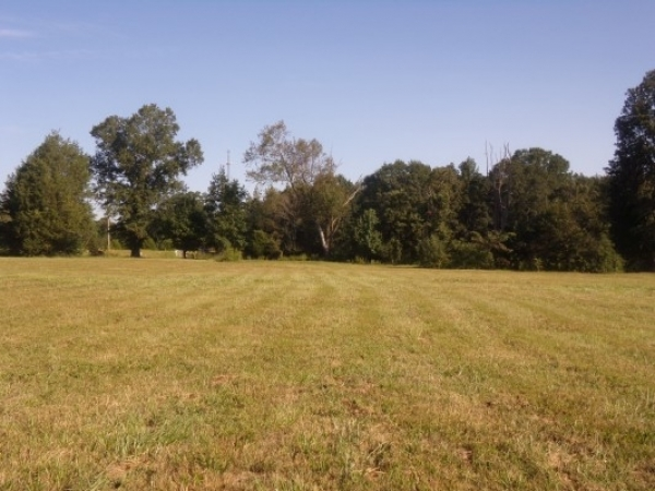 Listing Image #3 - Land for sale at 0 Jefferson Street, Athens AL 35611