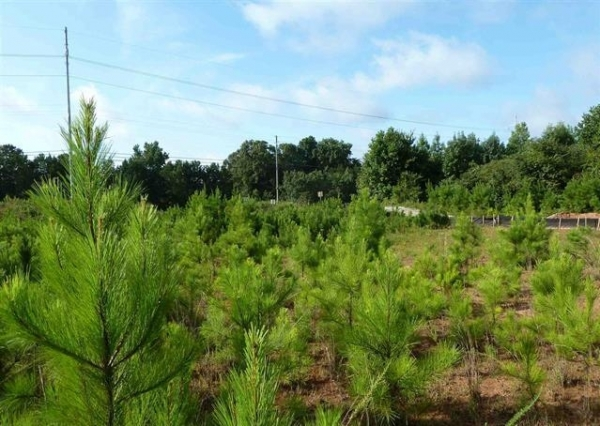 Listing Image #1 - Land for sale at 0 Charles Hardy Parkway, Dallas GA 30157