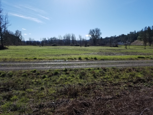 Listing Image #2 - Land for sale at 23947 REDWOOD HIGHWAY, Willits CA 95490