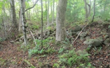 Land for sale in Blairsville, GA