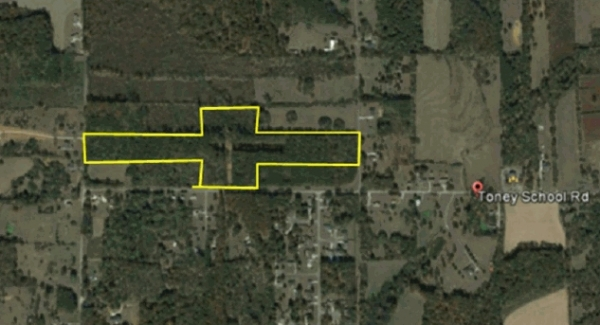 Listing Image #1 - Land for sale at Toney School Road, Toney AL 35773