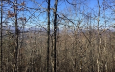 Listing Image #3 - Land for sale at LT 74 Mountain Top Rd, Blairsville GA 30512