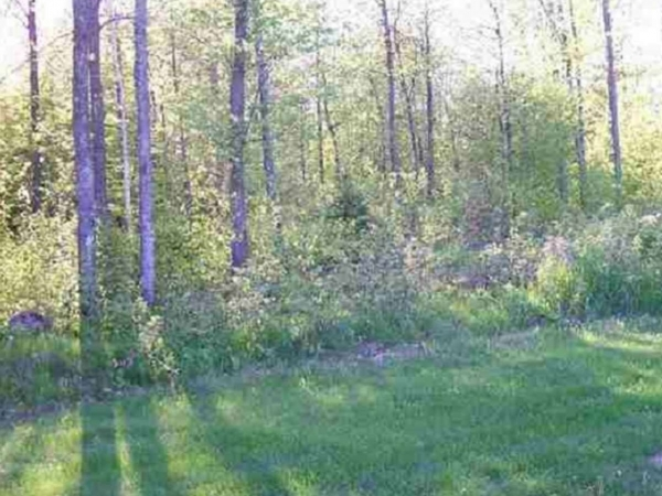 Listing Image #3 - Farm for sale at Lot 9 Lances Cir, Hatley WI 54440