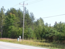 Listing Image #3 - Others for sale at TBD E Channel RD, Drummond Island MI 49726