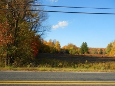 Land for sale in Springbrook Twp, PA