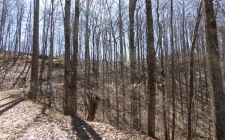 Land for sale in Hayesville, NC