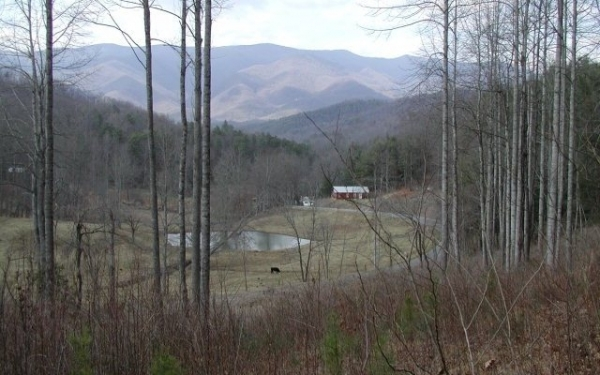 Listing Image #1 - Land for sale at Cold Branch, Hayesville NC 28904