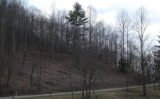 Listing Image #2 - Land for sale at Cold Branch, Hayesville NC 28904