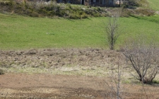 Listing Image #3 - Land for sale at BF1 Chatuge Ln, Hayesville NC 28904