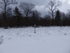 Listing Image #1 - Land for sale at Lot 11 Renaissance Drive, Manistee MI 49660